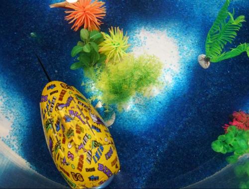 北京ROBOSEA公司开发的一款鱼状潜水机器人