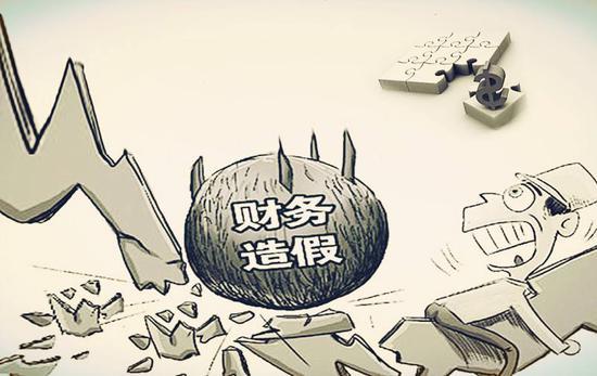 盘和林:财务造假扫雷除会计师事务所外须对准发行人